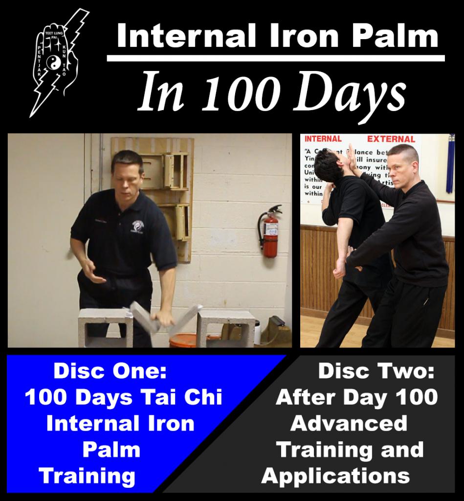 iron palm in 100 days pdf