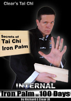 Internal Iron Palm in 100 Days