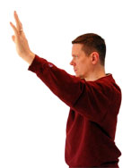 tai-chi-fighting-position-side