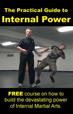 Internal-Power-Guide