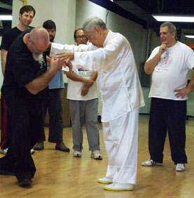 tai chi for fighting